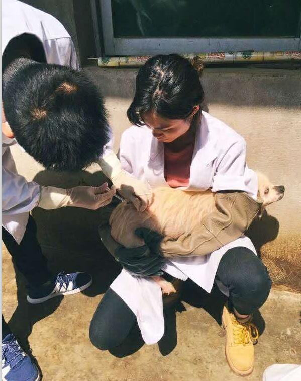 重庆宠物医院